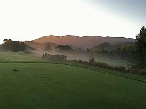 Meadow Club mist